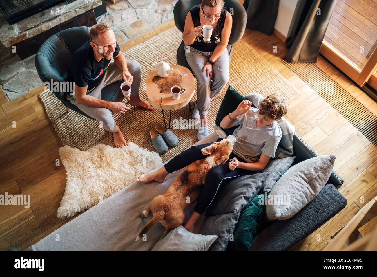 Cozy family tea time. Father, mother and son  at the home living room. Boy lying in comfortable sofa and  stroking their beagle dog and smiling. Peace Stock Photo