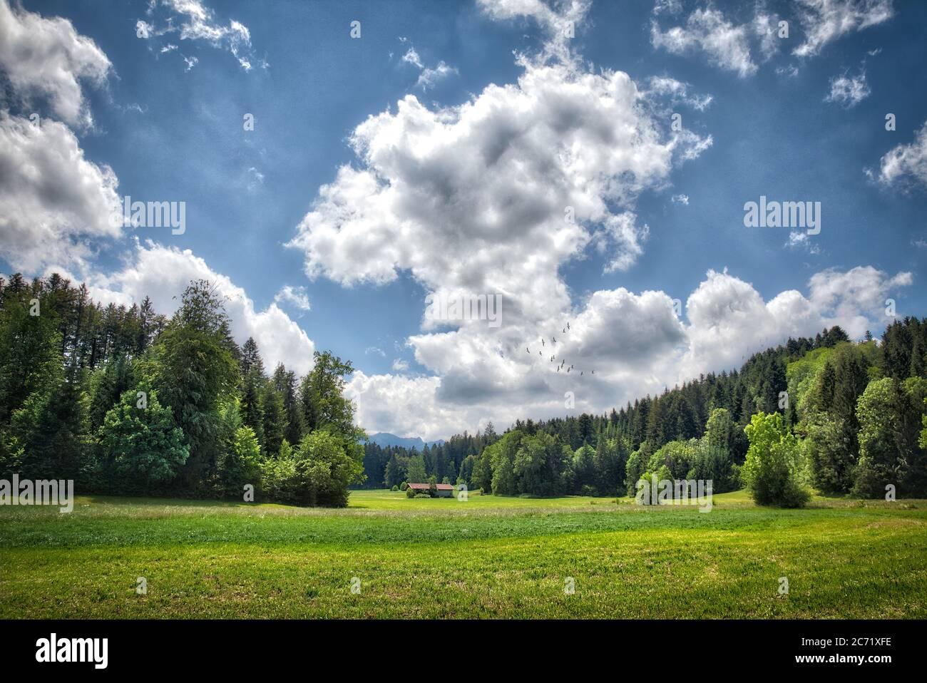 DE - BAVARIA: Alpine landscape above Bad Toelz at Wackersberg Stock Photo