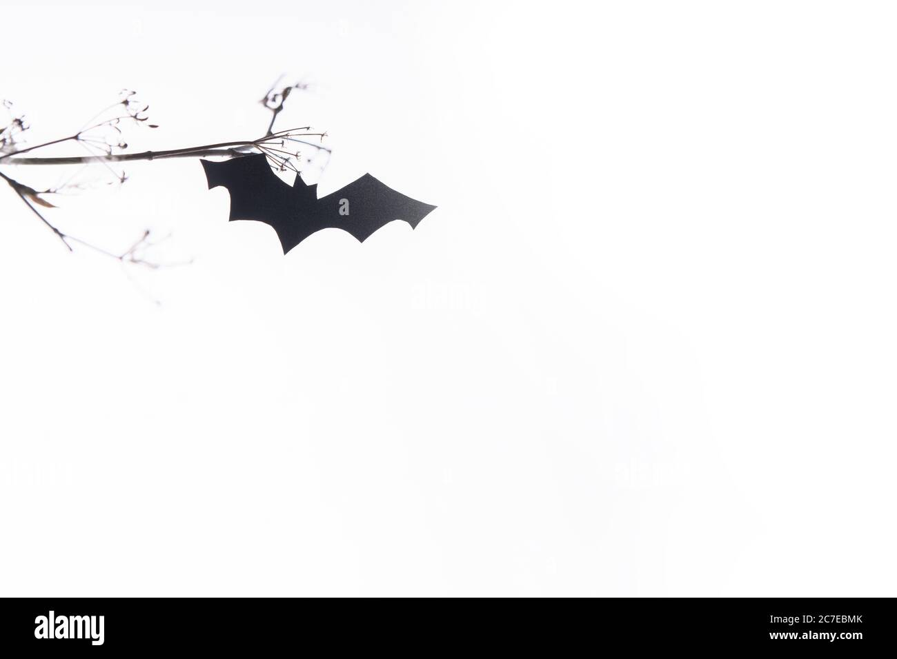 Halloween Invitation Paper High Resolution Stock graphy