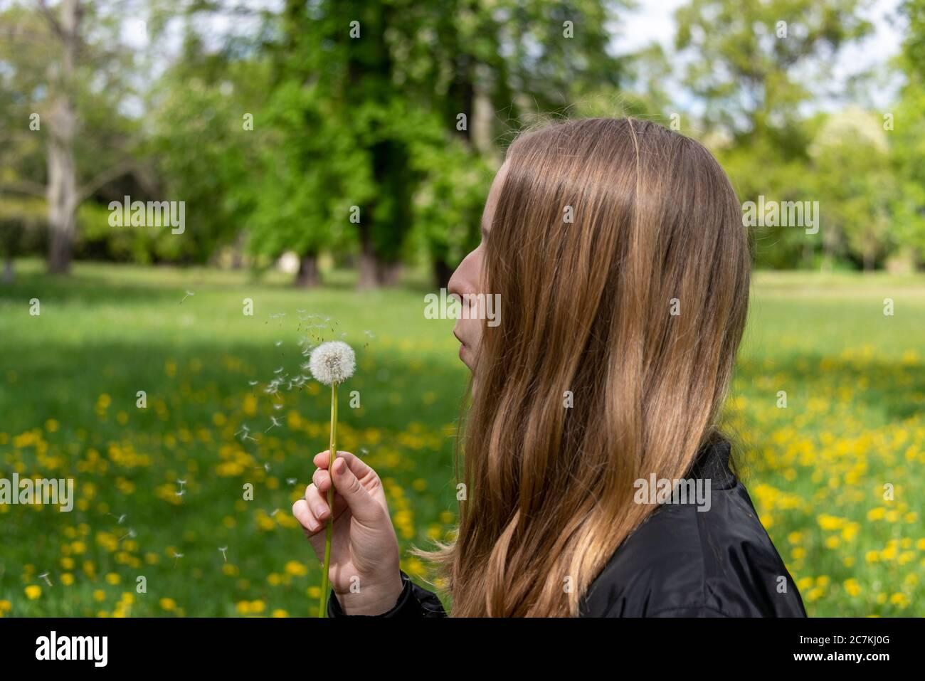 Schoolgirl, dandelion Stock Photo