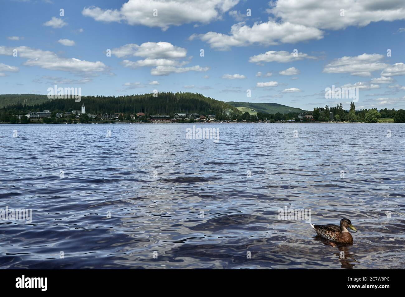 Lake Titisee in the Black Forest with green vegetation and the town behind the water in Titisee-Neustadt, Germany Stock Photo