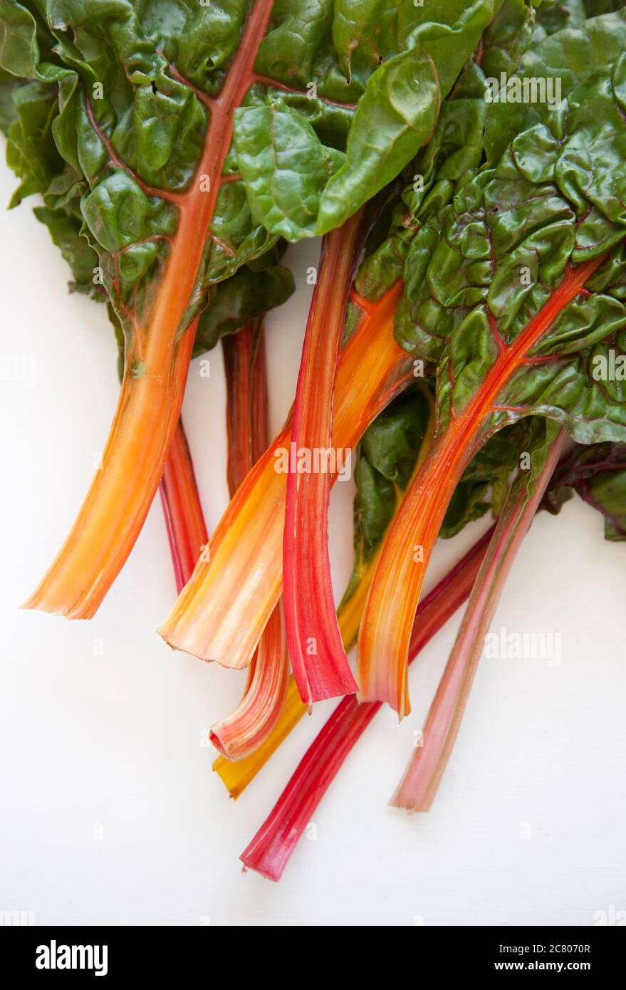 Leaves Of Rainbow Chard On A White Ground Stock Photo Alamy