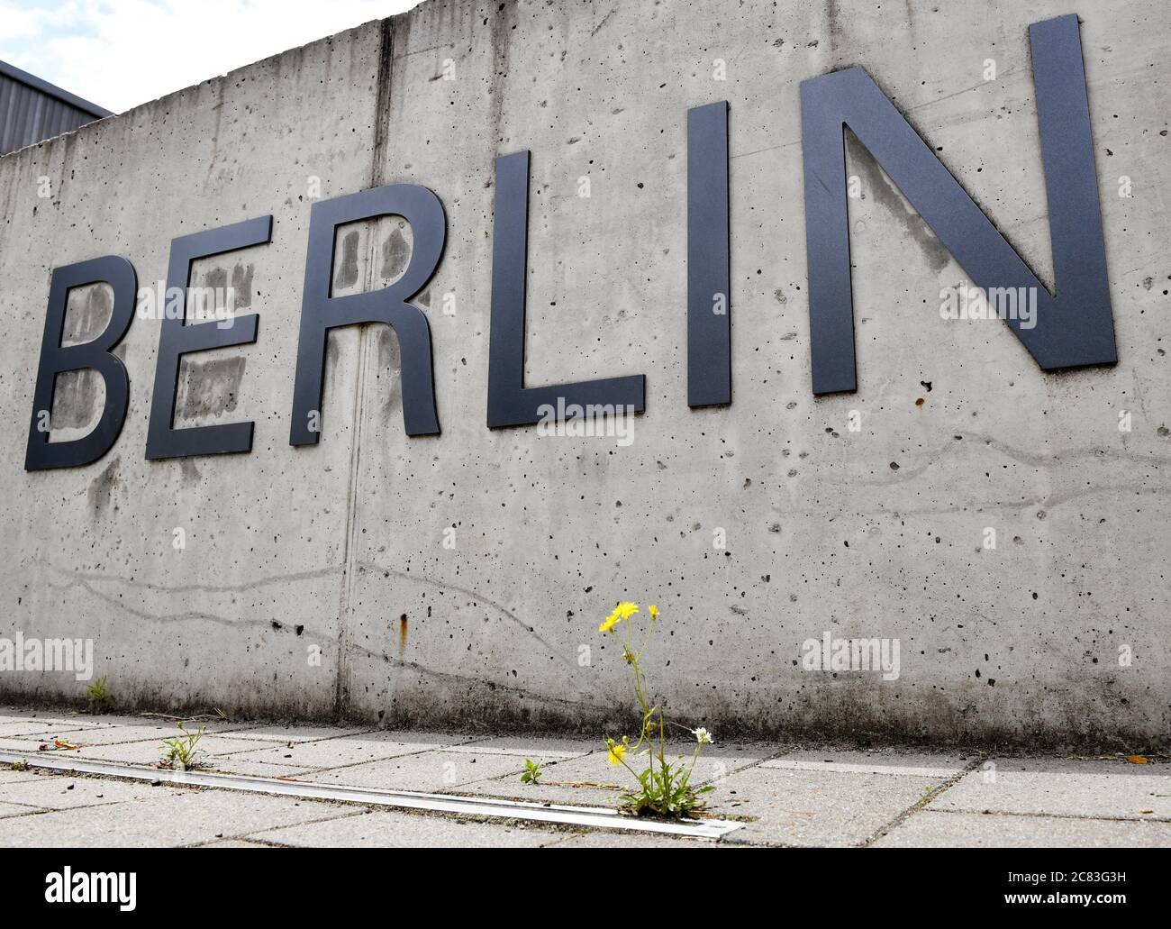"""Berlin, Germany. 03rd July, 2020. The word """"Berlin"""" is attached to a concrete wall in front of a university building of Freie Universität in Dahlem. In front of it, a yellow flower grows from the pavement. It is part of the lettering """"Freie Universität Berlin"""". Credit: Jens Kalaene/dpa-Zentralbild/ZB/dpa/Alamy Live News Stock Photo"""