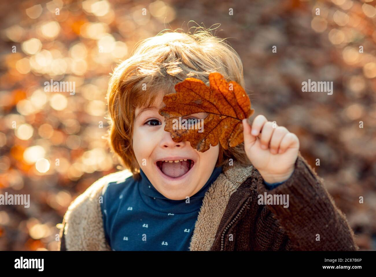 Toddler boy in autumn park. Child covers his eyes with a yellow maple leaf in the autumn park. Kids walking in autumn park. Cute boy playing with Stock Photo
