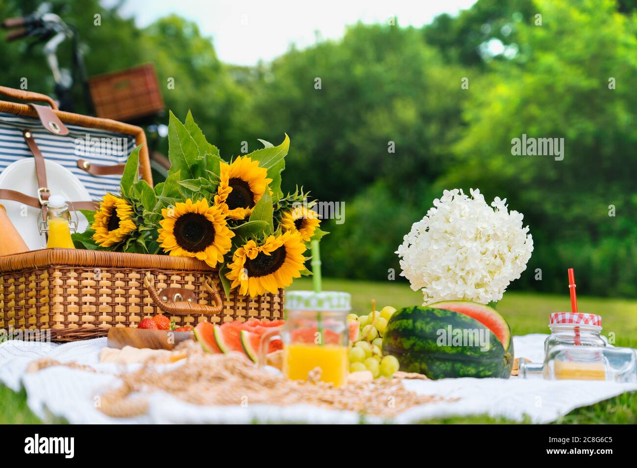 Summer Picnic Concept On Sunny Day With Watermelon Fruit Bouquet Hydrangea And Sunflowers Flowers Picnic Basket