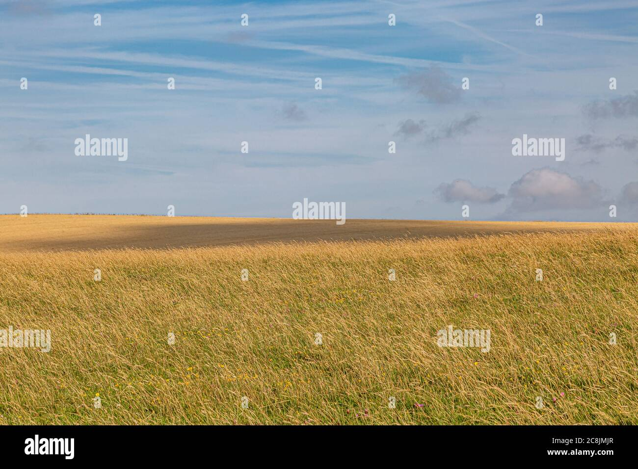 A cloud shadow passing over a field along the South Downs Way in Sussex, on a sunny summers evening Stock Photo
