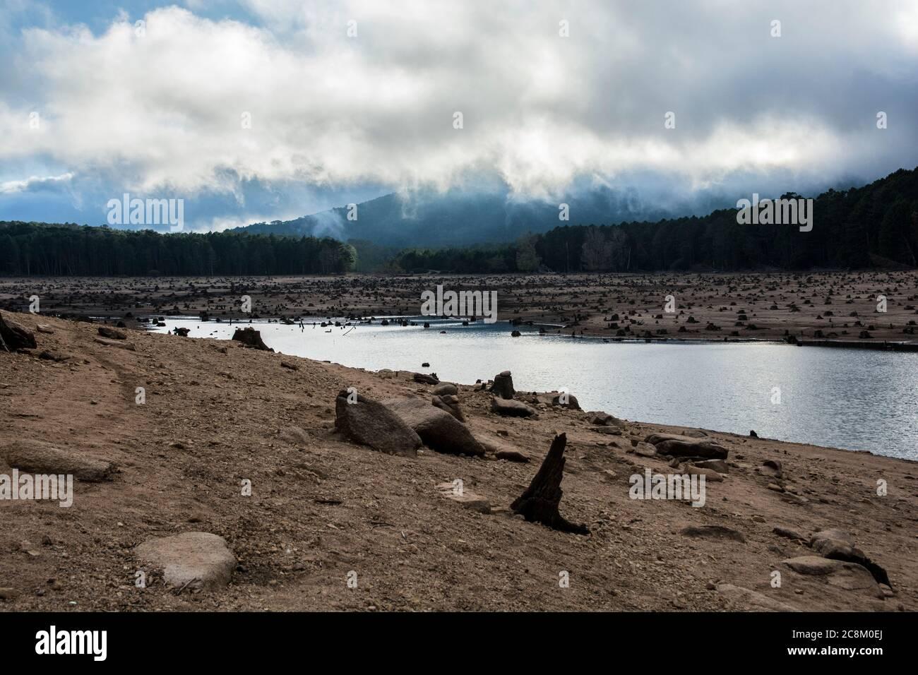 "A deforestation site, next to the lake ""Lac de l'Ospedale"", Corsica Stock Photo"