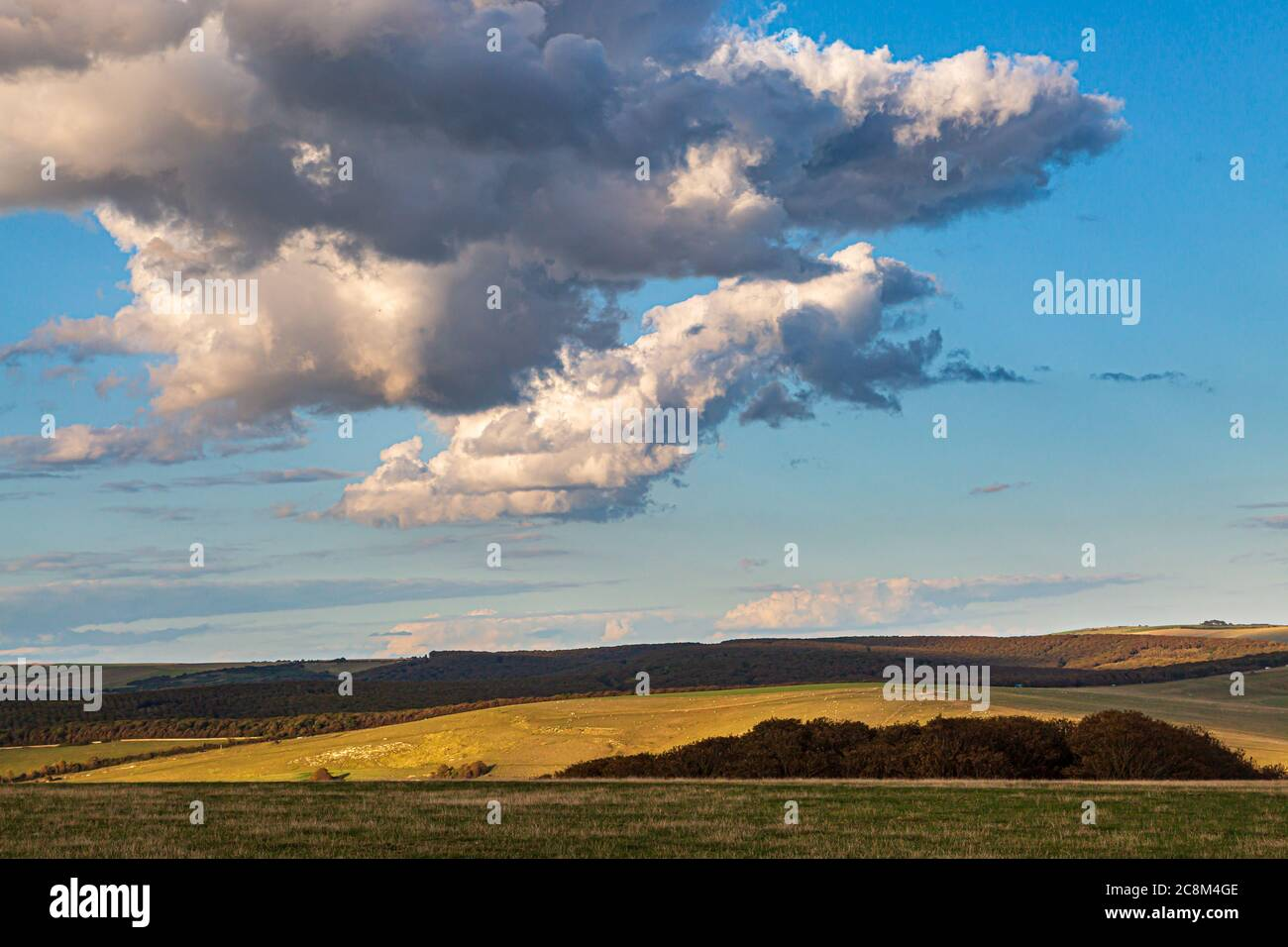 Fluffy clouds over the South Downs in Sussex, on a sunny summers evening Stock Photo