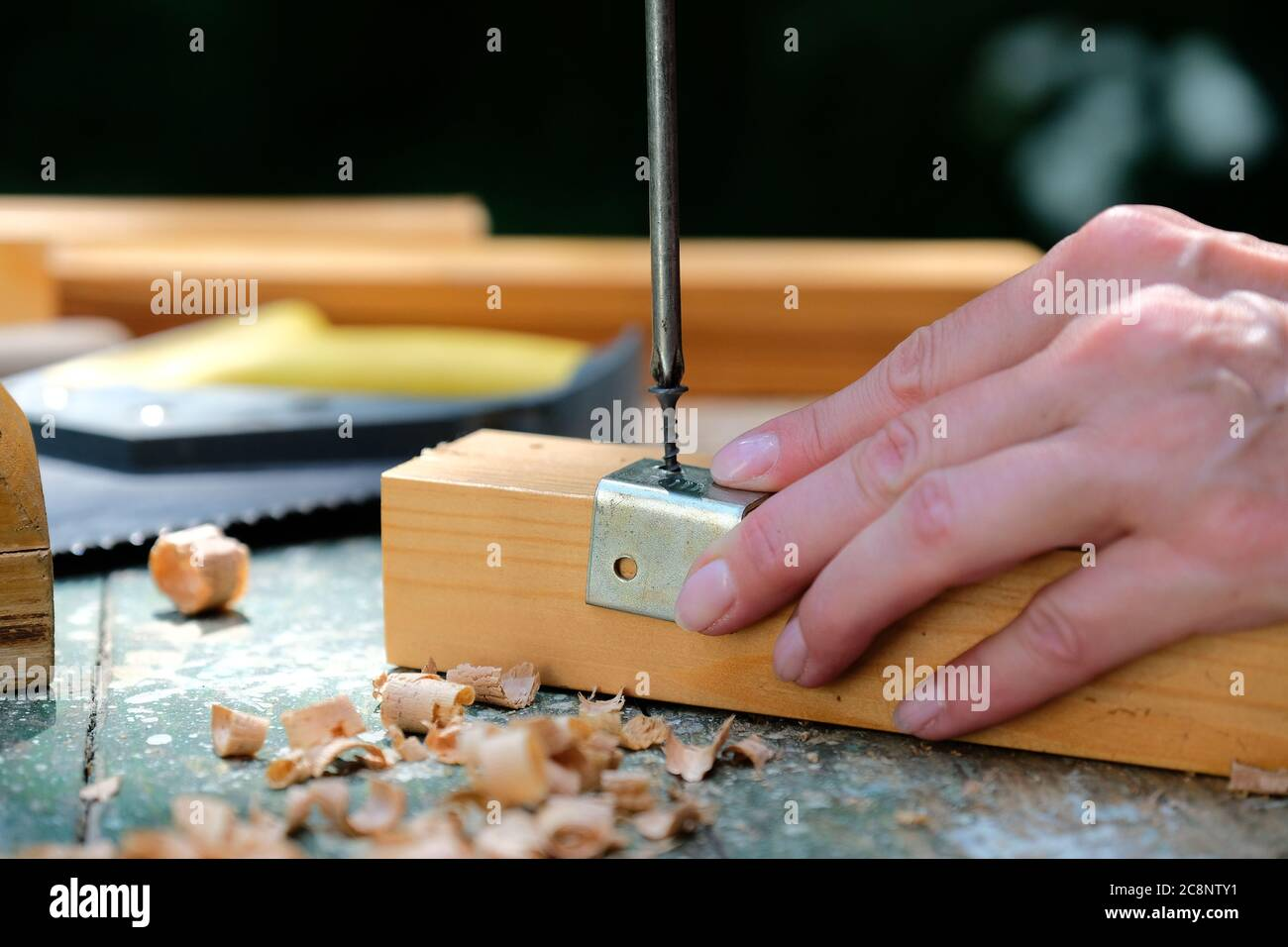 Diy Furniture Renovation Concept Woman Using Screwdriver To Mount Metal Bracket On Wooden Plank Close Up View Stock Photo Alamy