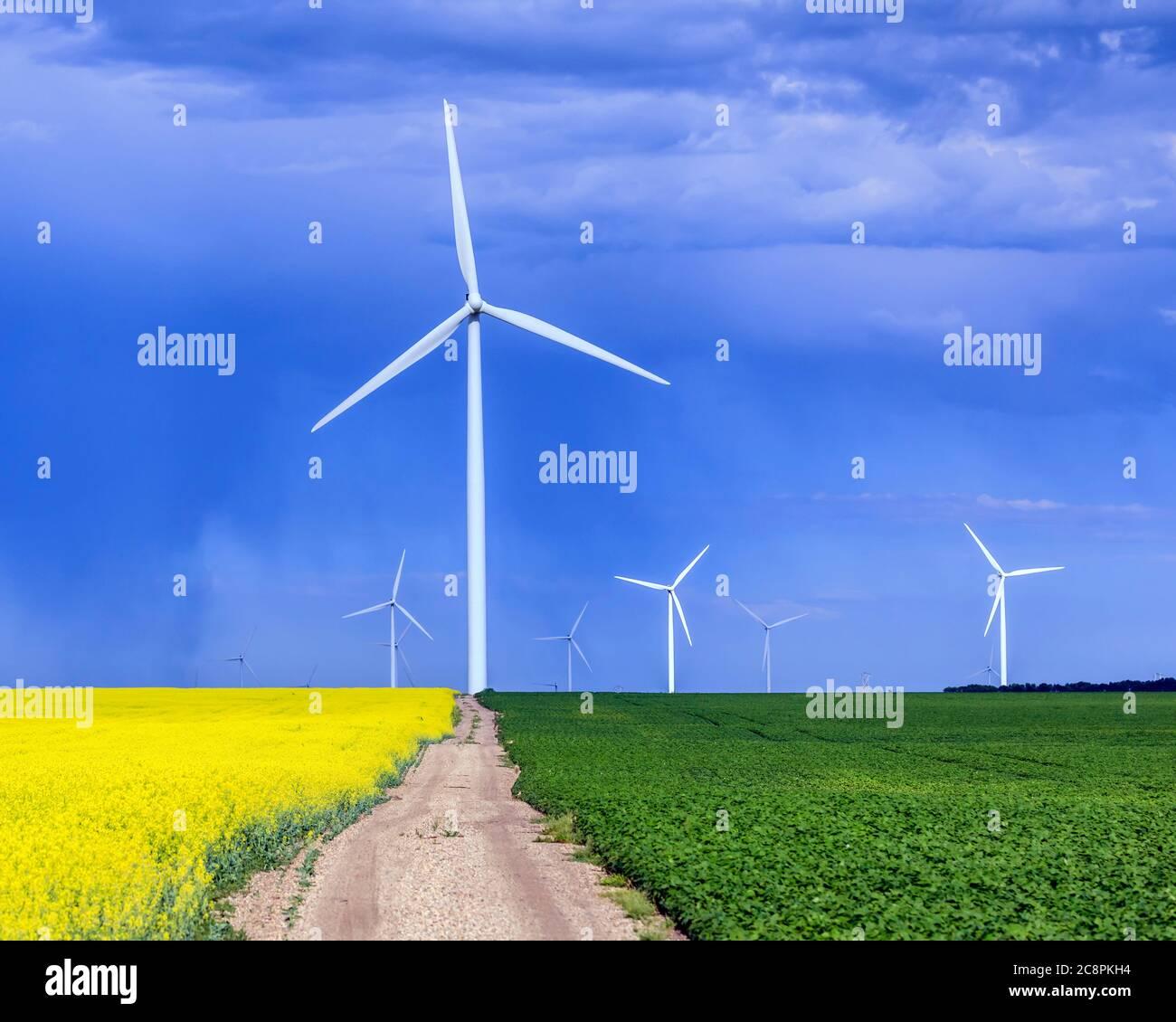Wind energy turbines, St. Leon, Manitoba, Canada. Stock Photo