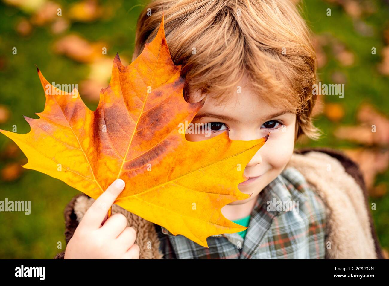 Child covers his eyes with a yellow maple leaf in the autumn park. Happy kid, little boy, playing in beautiful autumn park on warm fall day. Kids play Stock Photo