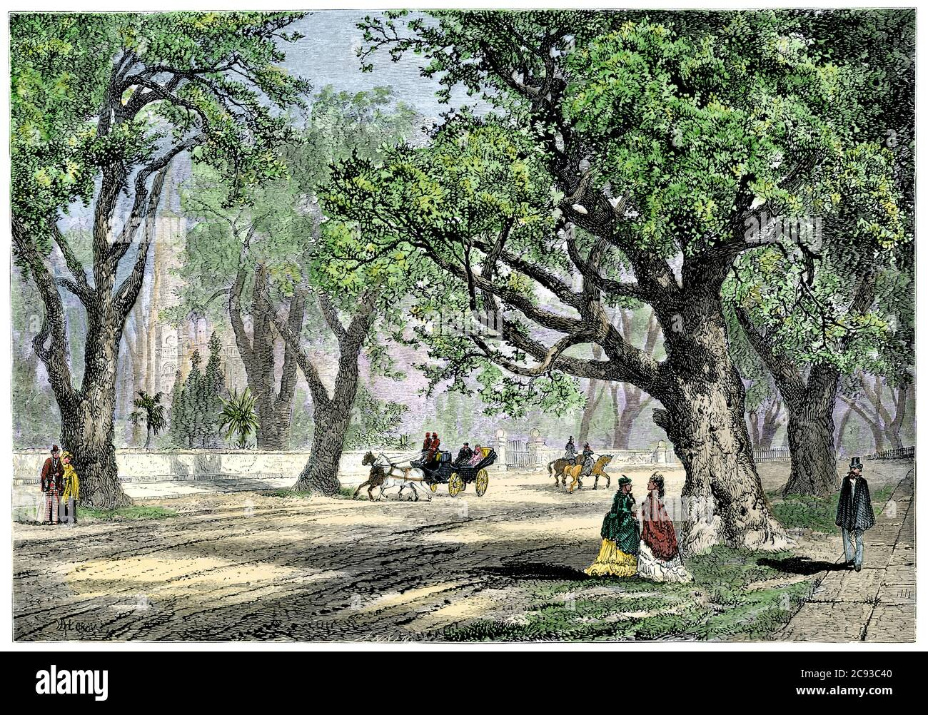 Oak-lined avenue in Oakland, California, about 1880. Hand-colored woodcut Stock Photo