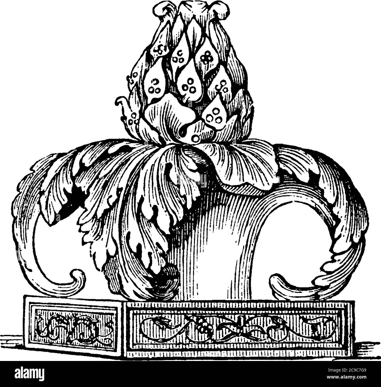 Thyrsus, a pole carried by Bacchus, and by Satyrs, Maenades, and others. The annexed cut shows the head of a thyrsus composed of the leaves and berrie Stock Vector