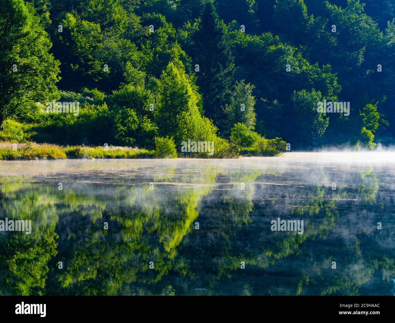Preserved nature natural environment morning bright mist fog above water surface of Lake Mrzla vodica in Croatia Europe Stock Photo