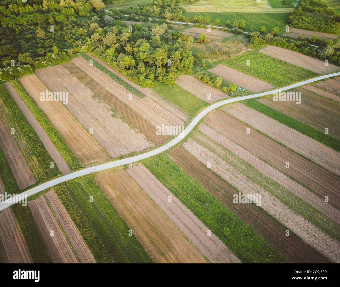 Eagle eye view of narrow dirt road in the middle of cultivated crop field on the forest edge  in rural landscape around Zagreb city, Croatia Stock Photo