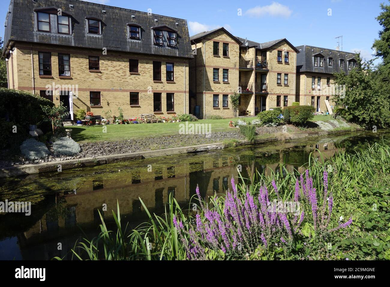 bishops stortford river stort canal walk, stort navigation, canal trust, quaint market town hertfordshire england uk great britain Stock Photo