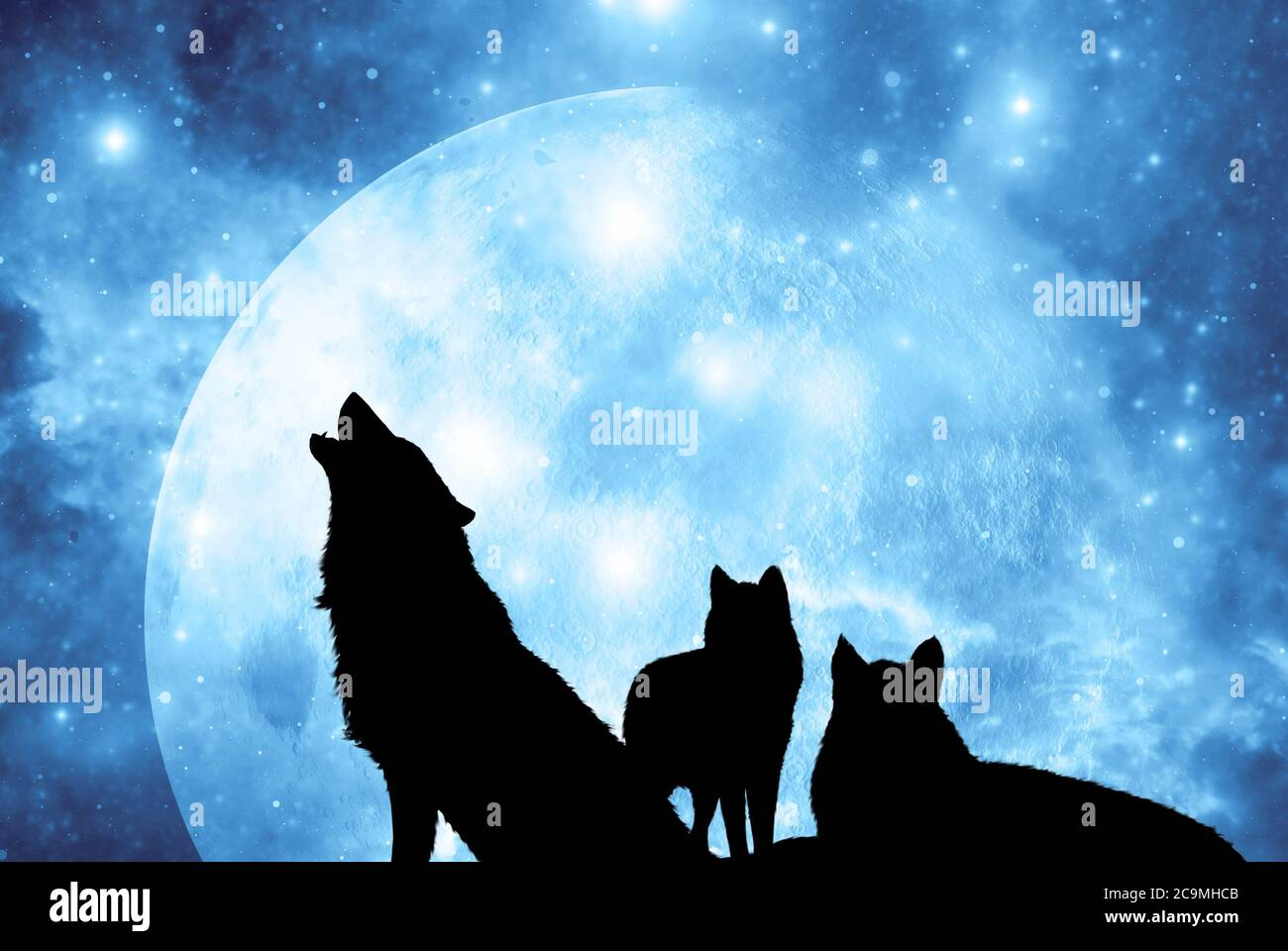 Wolves Howling At Moon High Resolution Stock Photography And Images Alamy