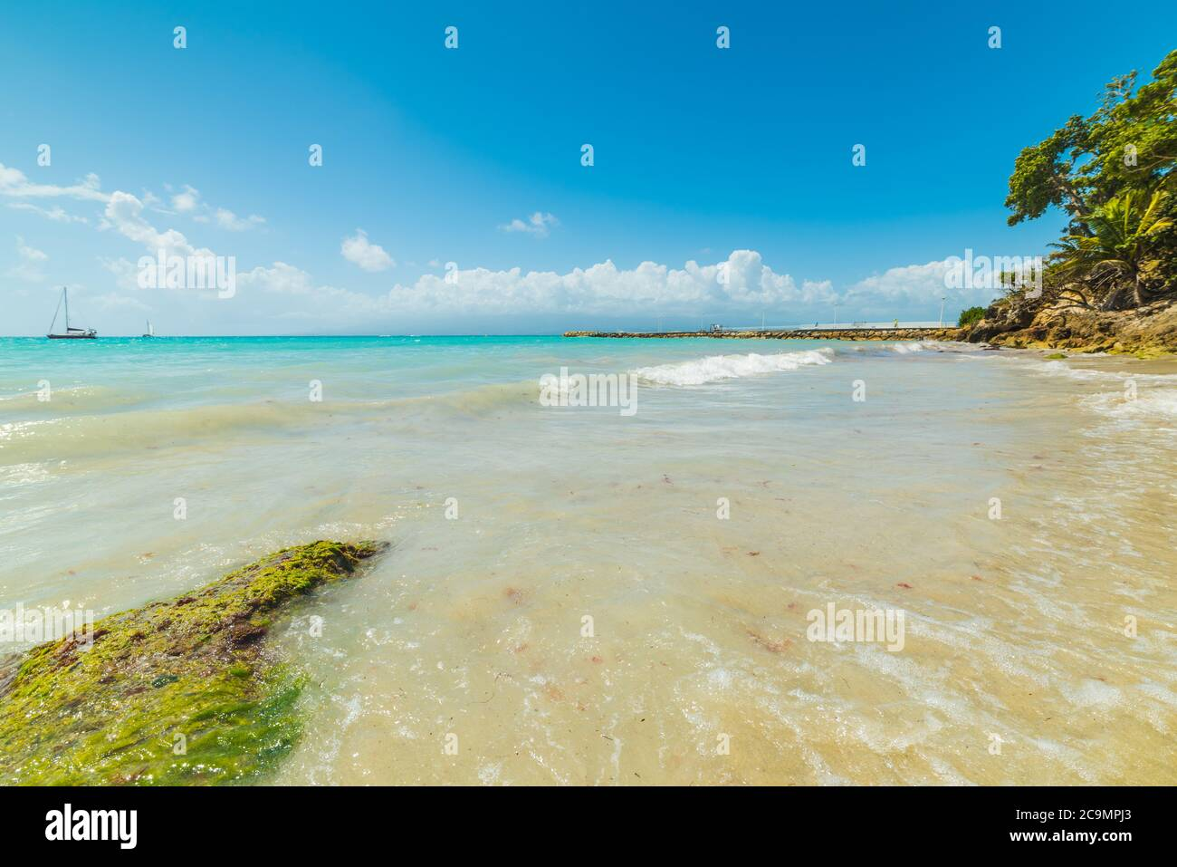 Turquoise water in La Datcha beach in Guadeloupe, French west indies. Lesser Antilles, Caribbean sea Stock Photo