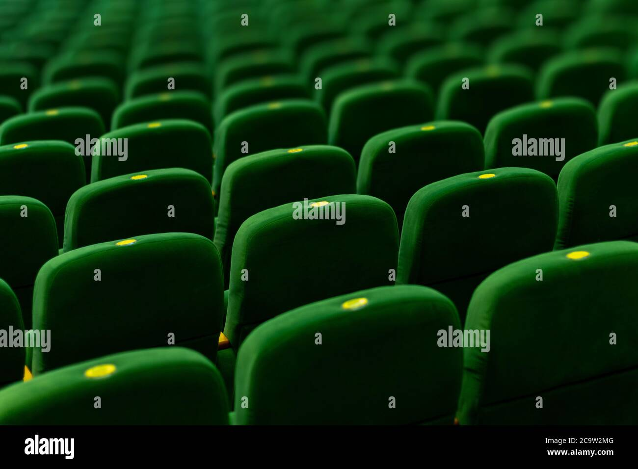 Green soft velvet chairs in the theater concert hall. Texture background for design. Stock Photo