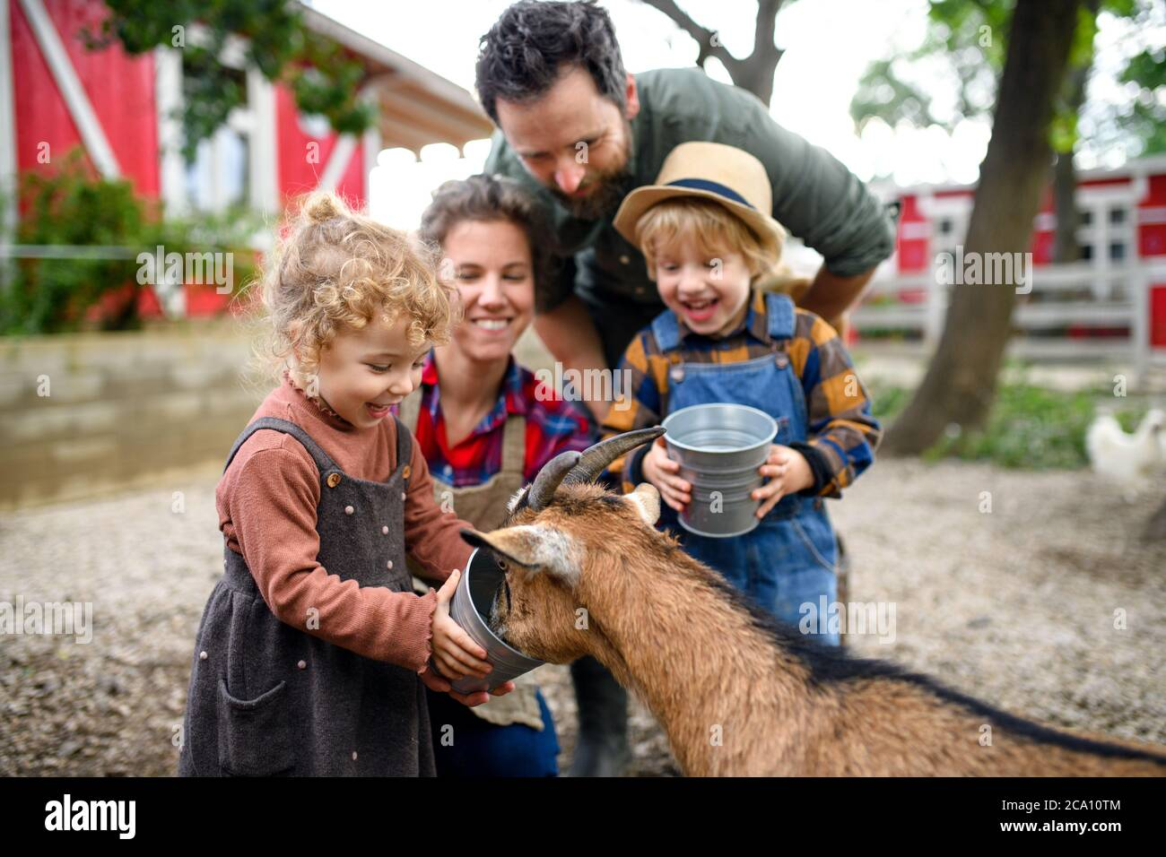 Portrait of family with small children standing on farm, giving water to goat. Stock Photo