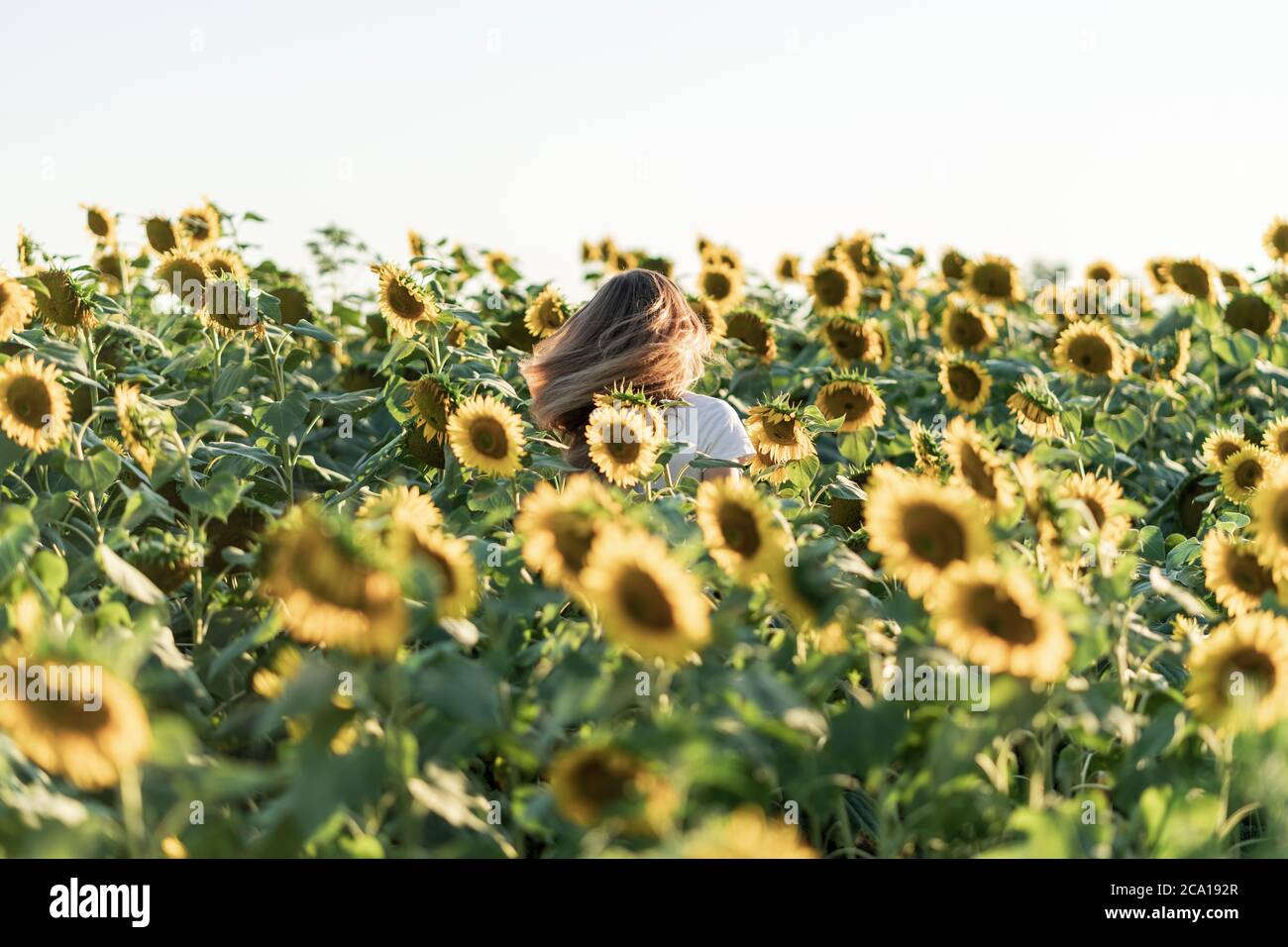Page 2 Beauty Beautiful Aesthetic Summer High Resolution Stock Photography And Images Alamy