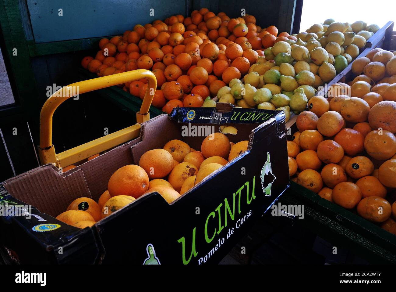 Display of citrus fruit at a fruit stand in France. Stock Photo