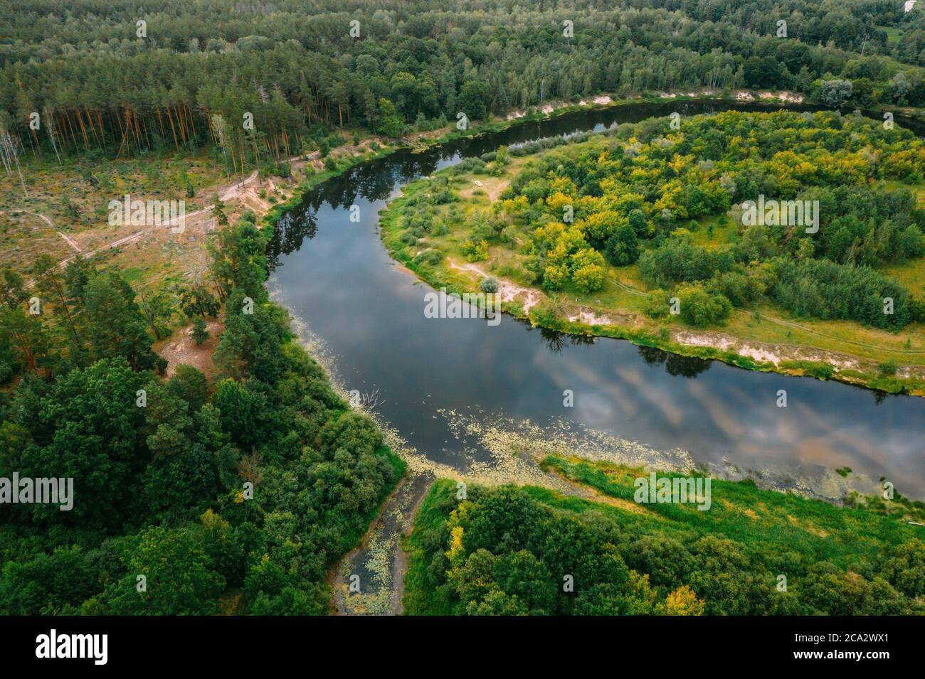 Aerial View Green Forest And River Landscape In Spring Evening. Top View Of Beautiful European Nature From High Attitude In Summer Season. Drone Stock Photo