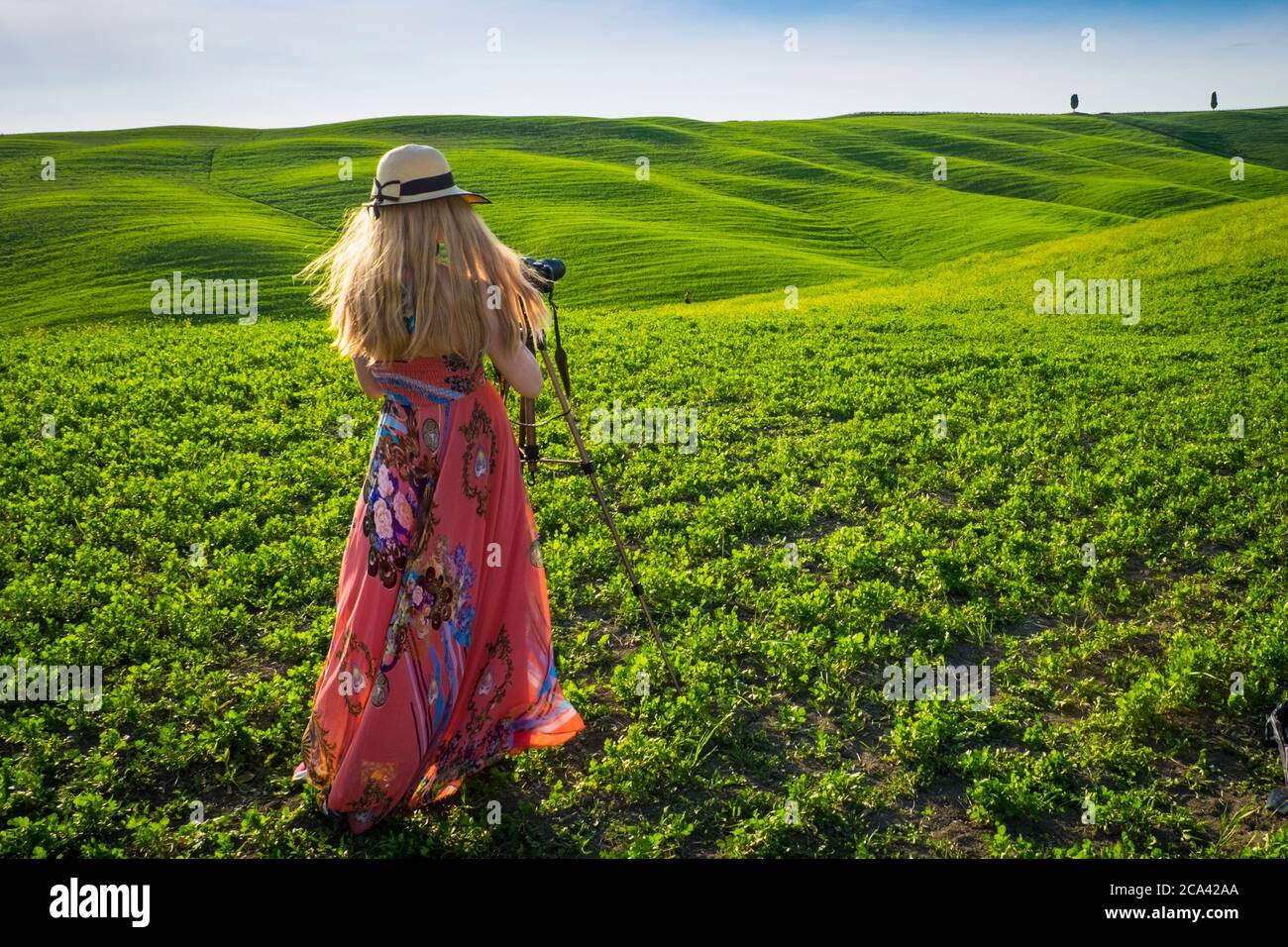Orcia Valley, Siena district, Tuscany, Italy, Europe. Blonde woman with hat takes pictures in green fields. Stock Photo