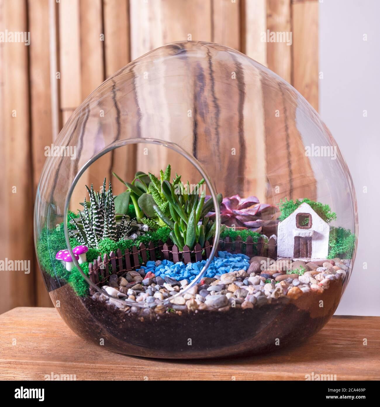 Terrarium Sand Rock Succulent Cactus Decor Small House In The Glass Stock Photo Alamy