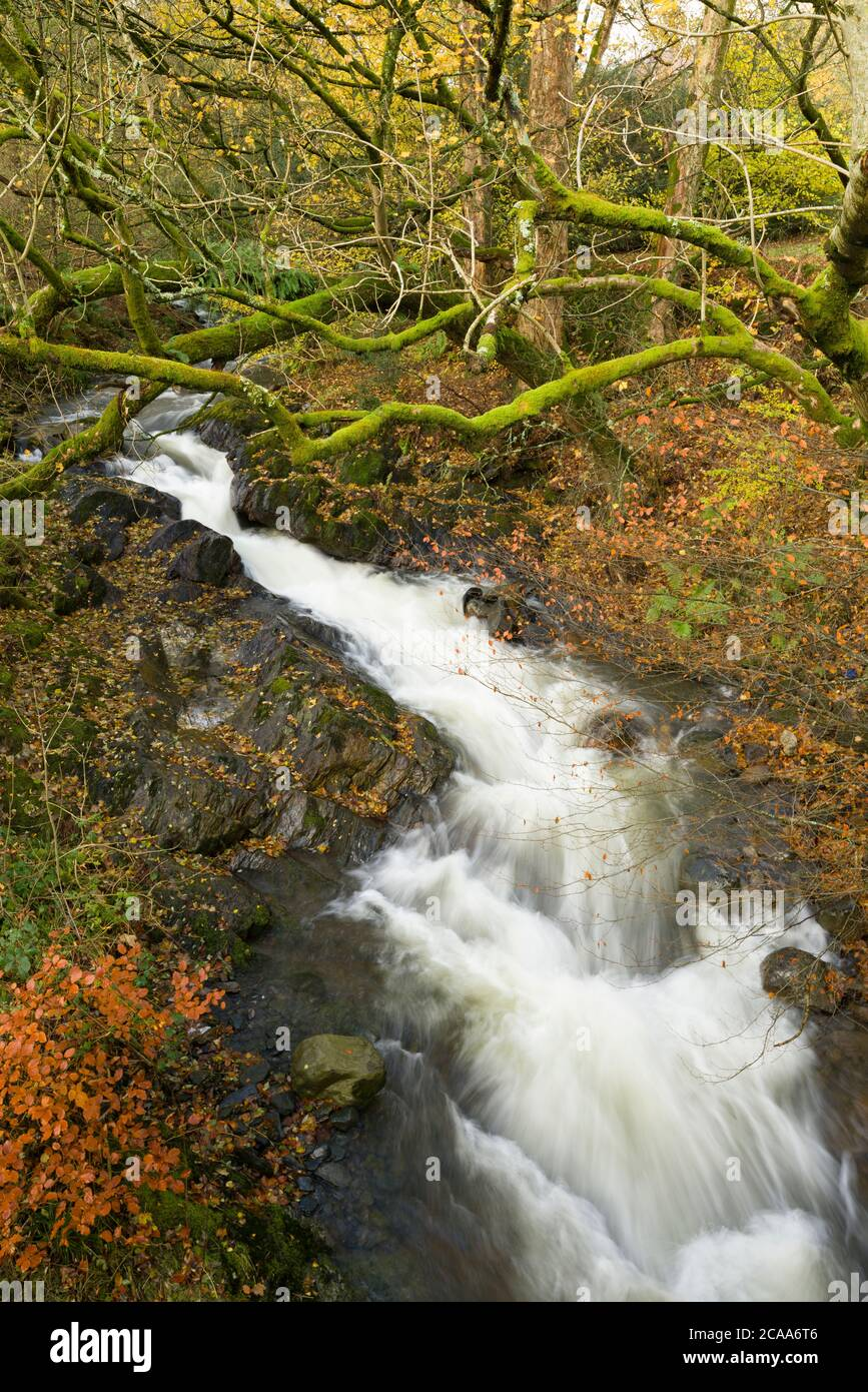 The River Glenderamackin at Mungrisdale in the Lake District National Park, Cumbria, England. Stock Photo