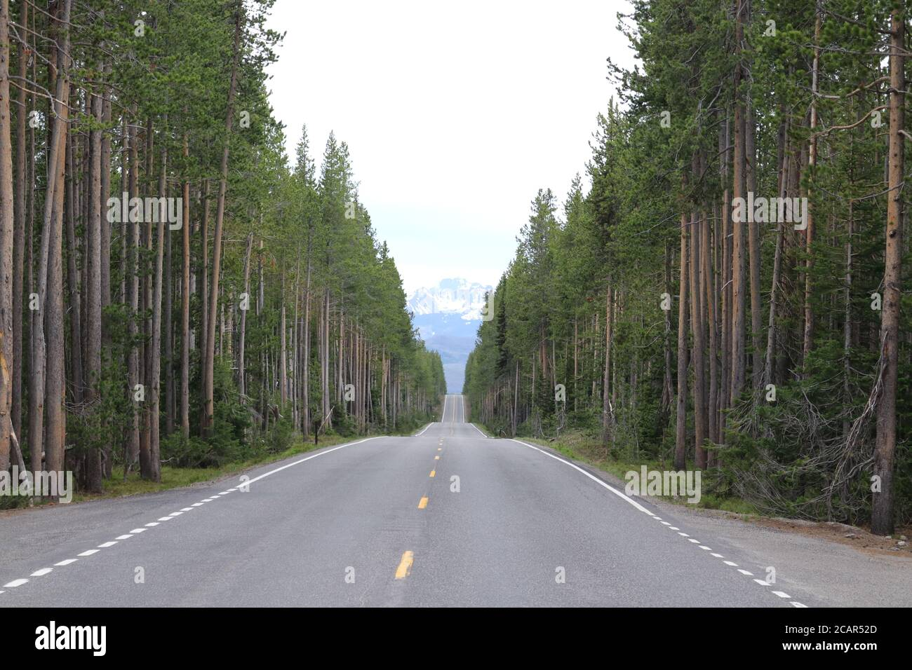 Lonely Road to Grand Tetons by Joe C Stock Photo