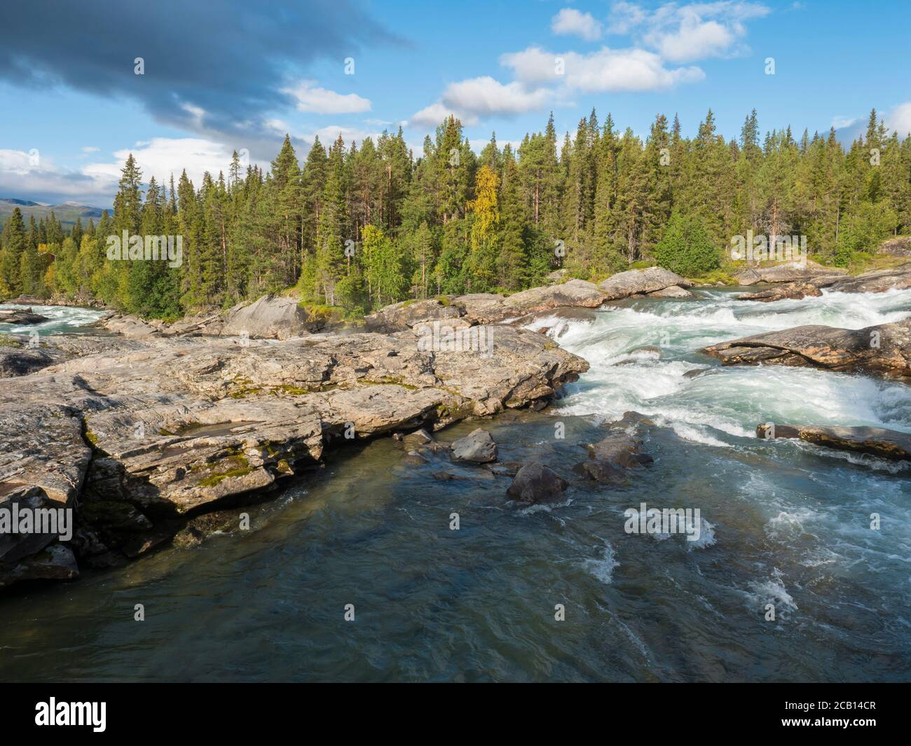 Beautiful northern landscape with wild glacial river Kamajokk, boulders and spruce tree forest in Kvikkjokk in Swedish Lapland. Summer sunny day Stock Photo