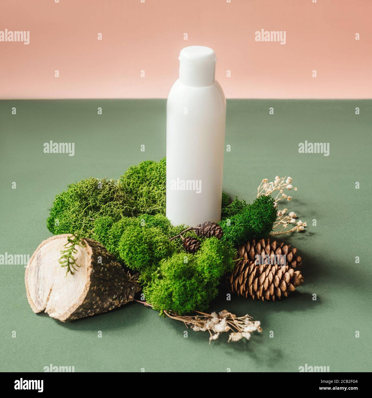 Blank white bottle on green moss. Natural organic cosmetics, alternative medicine, herbal essence, sustainable lifestyle concept. Front view, copy spa Stock Photo