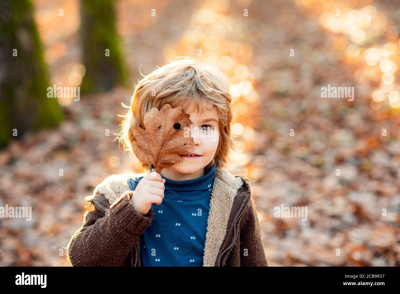 Child boy covers his eyes with a yellow maple leaf. Little boy playing with autumn leaves in the park. Stock Photo
