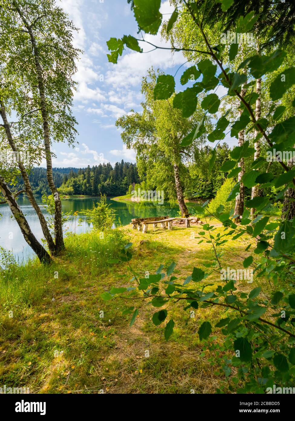 Green forest pretty beautiful preserved nature natural environment Spring season in lake Mrzla vodica in Croatia Europe morning Stock Photo