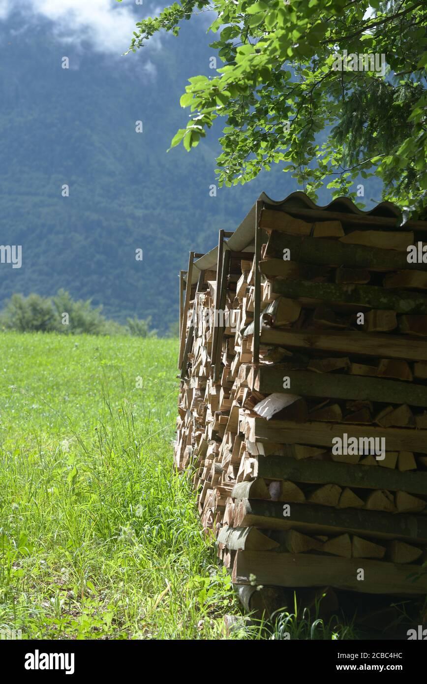 Holstoss mit Wiese und Baum im Mittagslicht Stock Photo