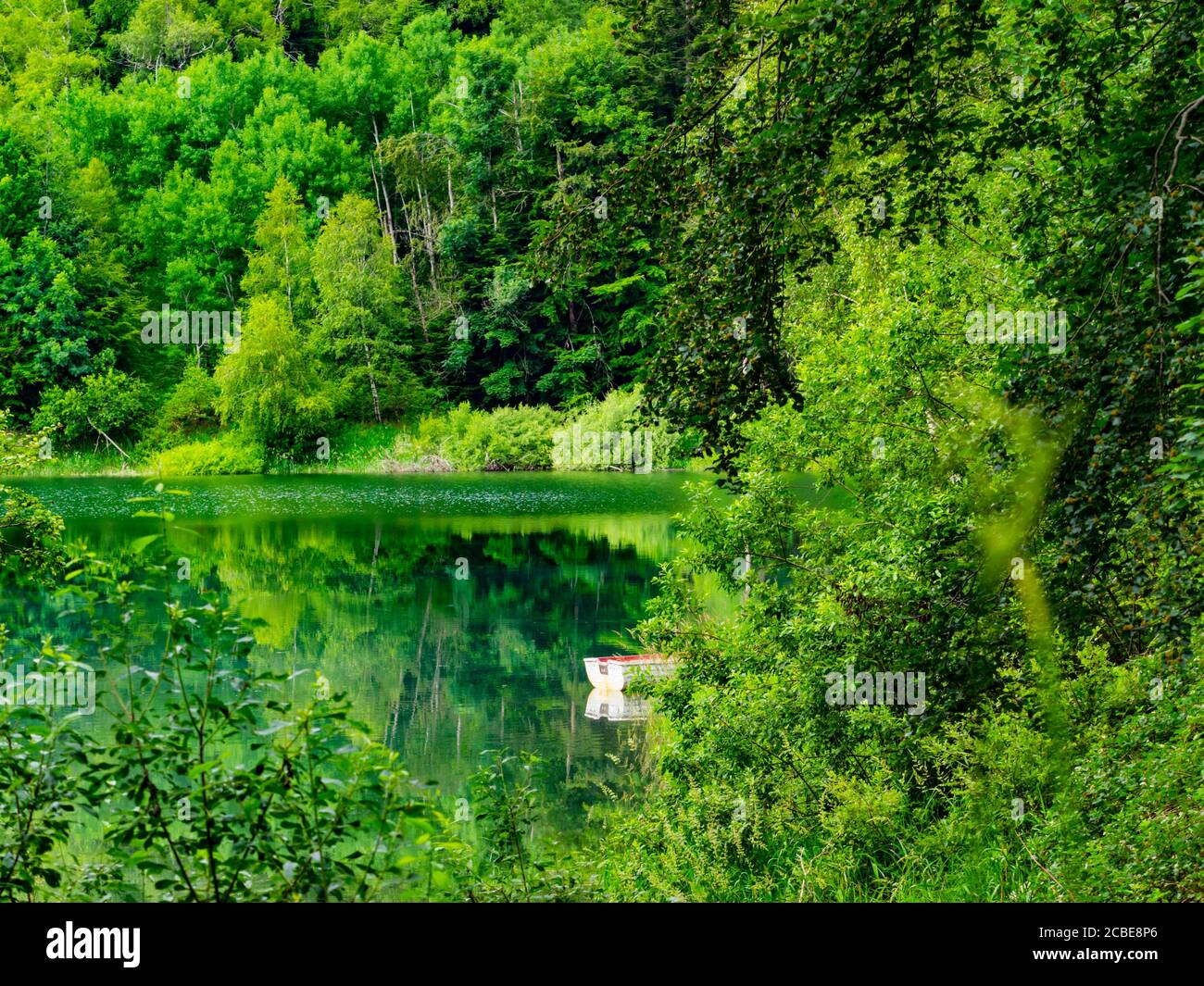 Lonely alone one boat coastline Green forest pretty beautiful preserved nature natural environment Spring season lake Mrzla vodica in Croatia Europe Stock Photo