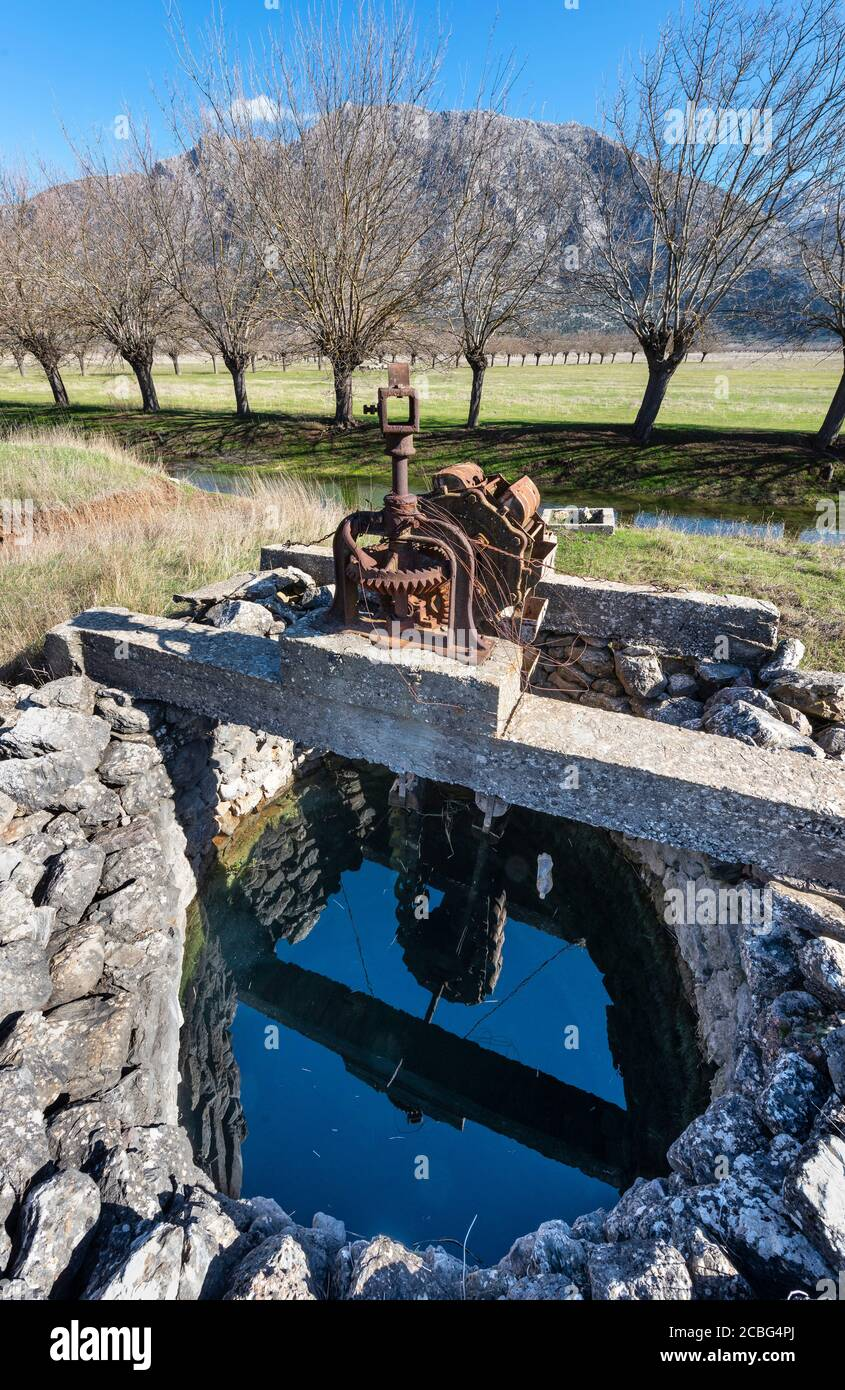 Mulberry trees by an irrigation channel and an old water well used to irrigate the flood plains of Mantineia, near Tripoli, Southern Arcadia, Peloponn Stock Photo