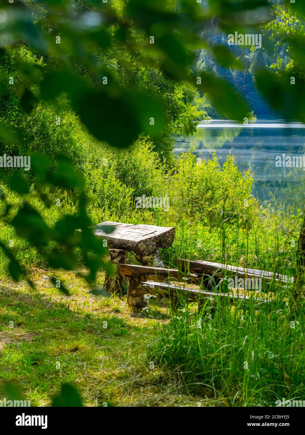 Green forest pretty beautiful preserved nature natural environment Spring season in lake Mrzla vodica in Croatia Europe dreamy Stock Photo