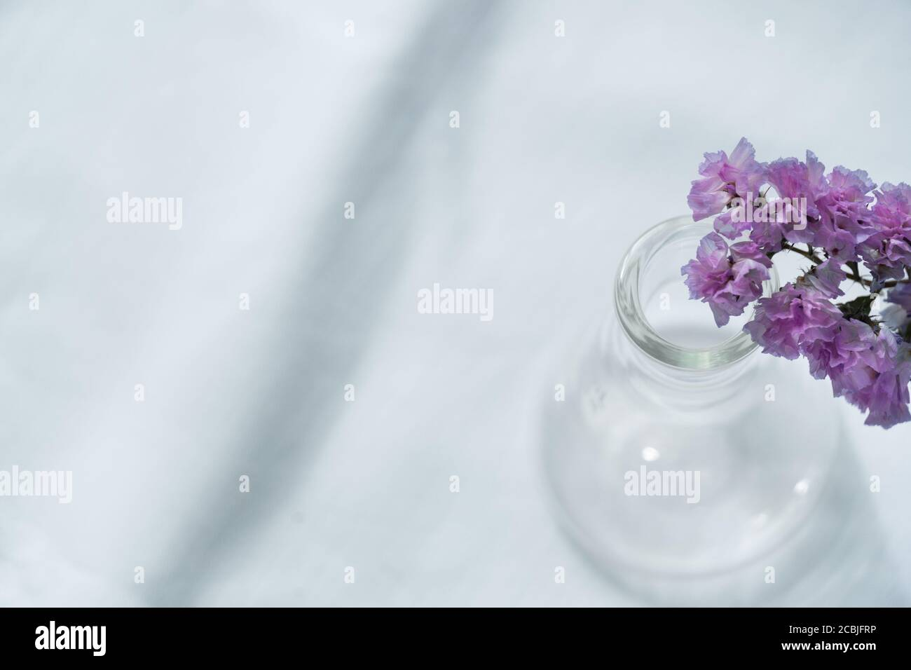 soft purple or violet flower from the top of glass science flask vase for  natural cosmetic research fabric on white fabric background Stock Photo