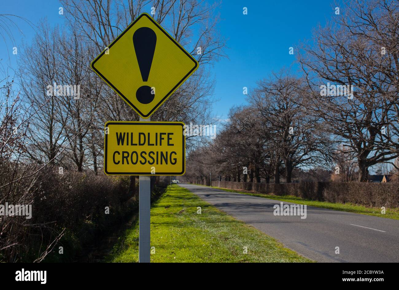 New Zealand Countryside Scenes: iconic road-signs and warnings. Stock Photo