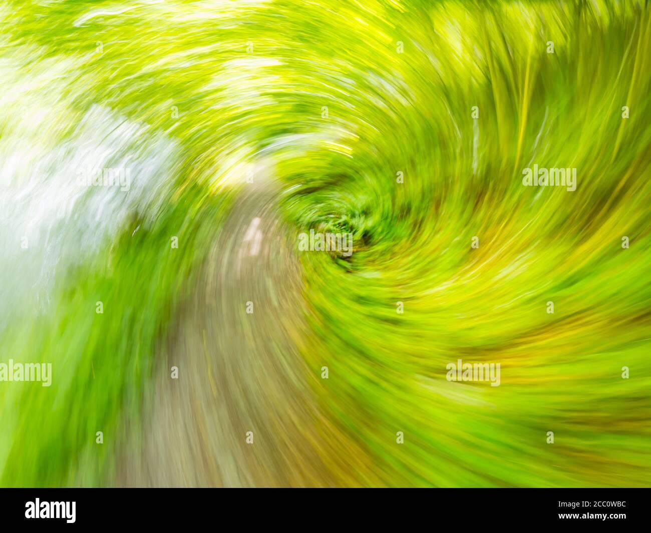 Circular motion vertigo inducing pathway trail through Green forest nature Spring season Zeleni vir near Skrad Croatia Europe Stock Photo