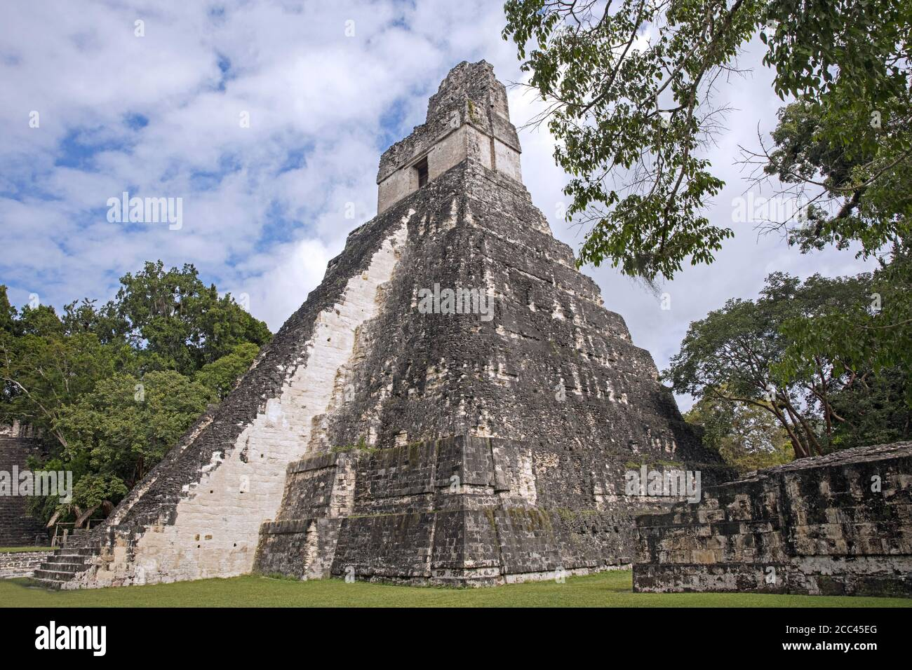 Temple pyramid at Tikal / Yax Mutal, ancient Maya city near the town Flores, Petén Department, Guatemala, Central America Stock Photo