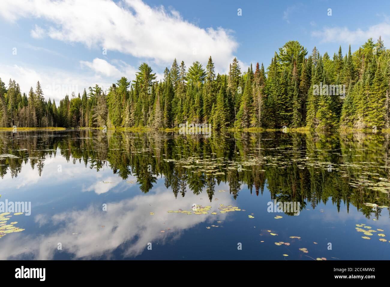Lake landscape at West Rose Pond in Algonquin Provincial Park Stock Photo