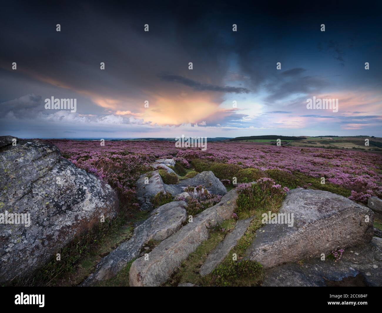 Peak District above Langset Res, evening sunset with the heather in full bloom Stock Photo
