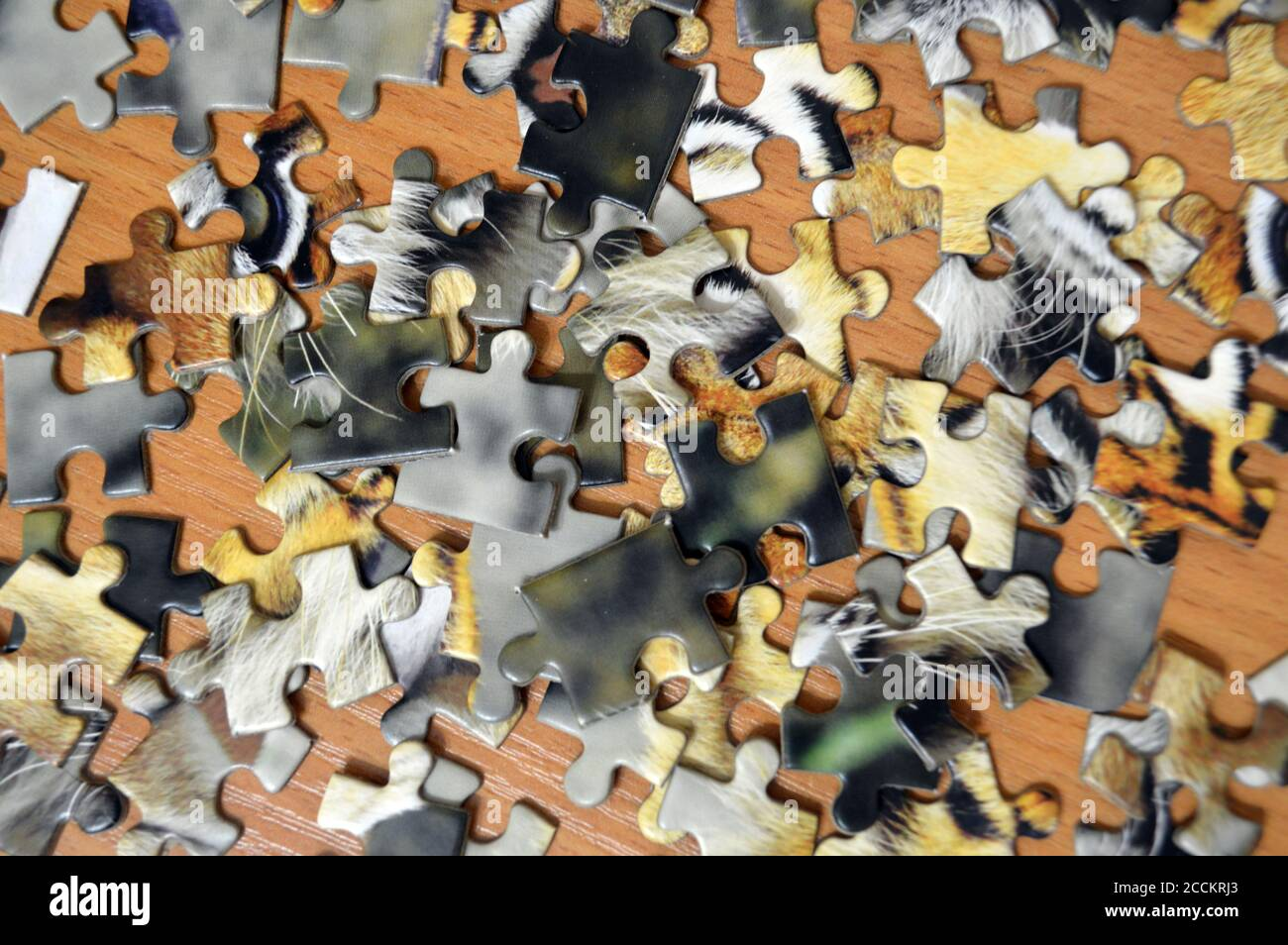 Unassembled puzzle concept idea problem game strategy jigsaw. Connect missing fit part leisure Stock Photo