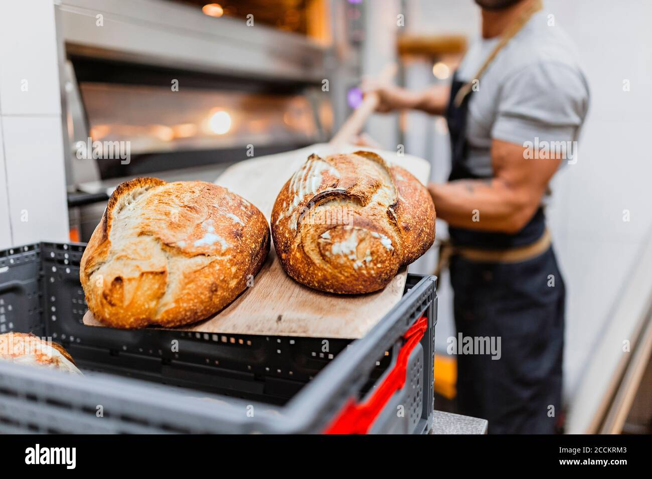 Baker with baked bread on wooden sheet at bakery Stock Photo