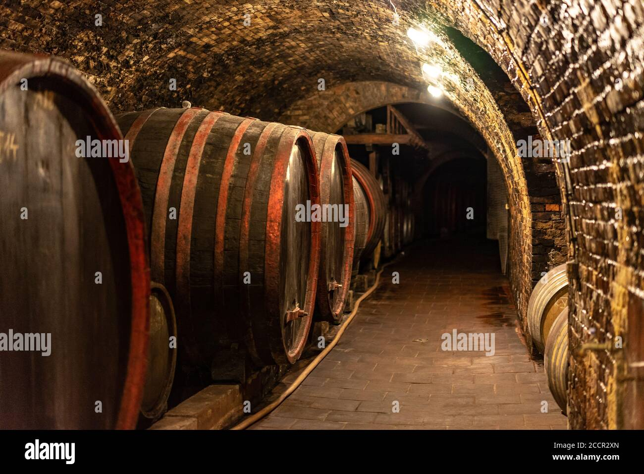 Wooden Old Barrels In The Rustic Wine Cellar With Brick Walls In Villany Hungary Stock Photo Alamy