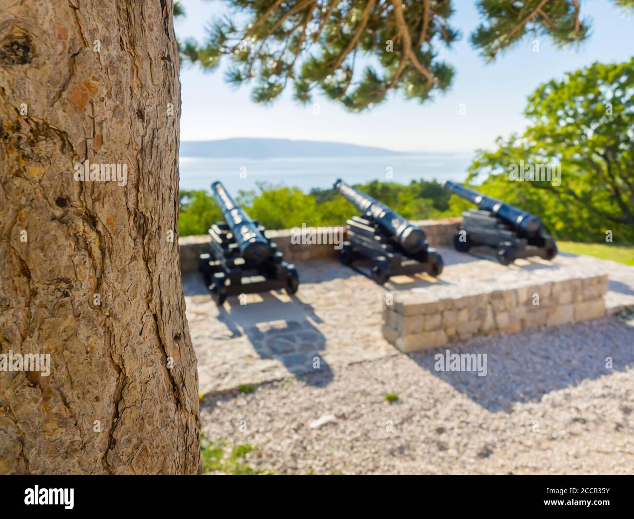Cannon before near Nehaj tower in Senj in Croatia Europe guns are intentionally blurry in defocused background focus on tree trunk Stock Photo