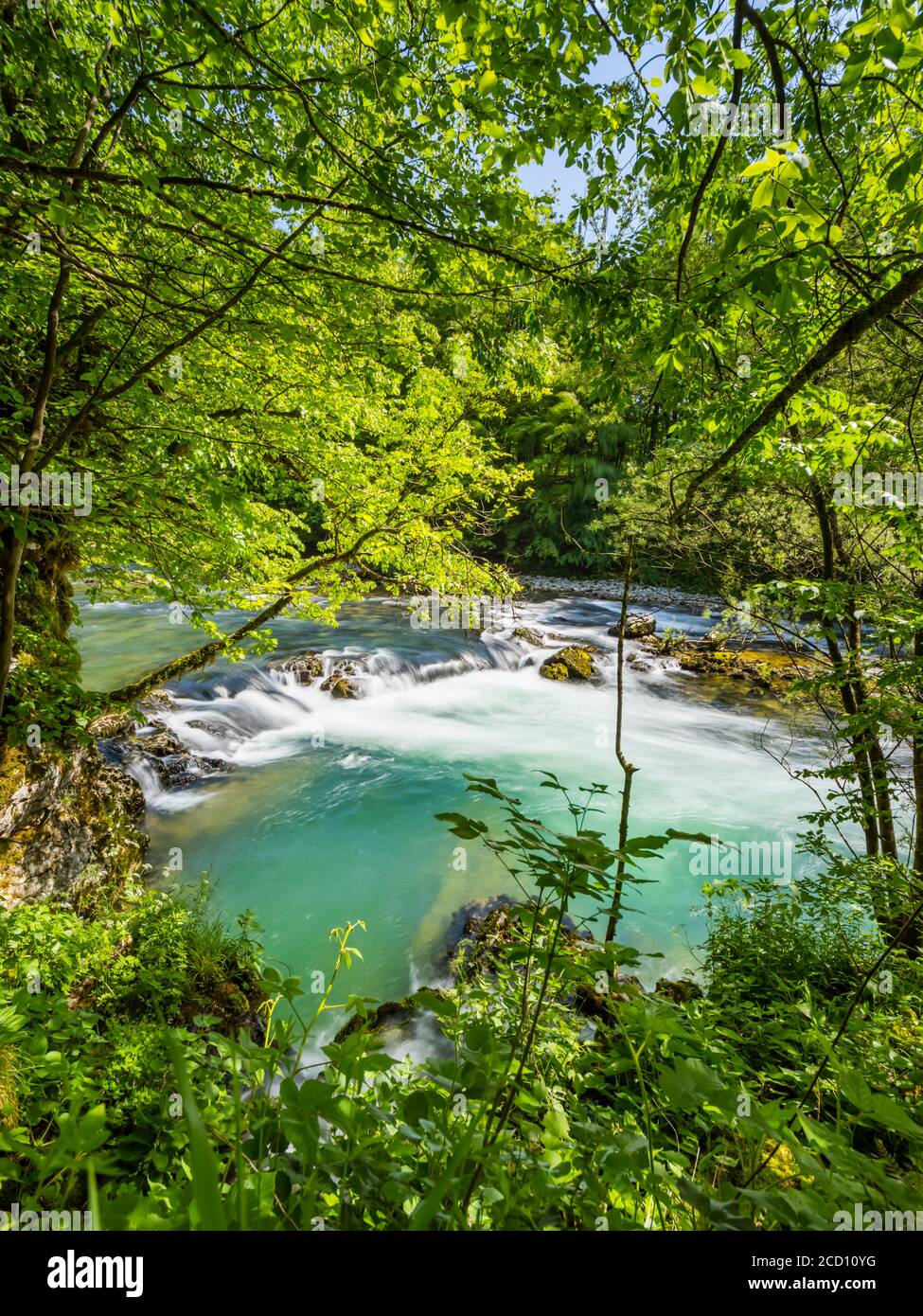 Small tributary river Krasicevic into Kupa river and cascading waterflow barrier nearby Stock Photo